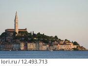 Купить «Town of Rovinj», фото № 12493713, снято 18 февраля 2019 г. (c) PantherMedia / Фотобанк Лори