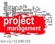 Купить «Project management word cloud with red banner», фото № 12540533, снято 16 сентября 2019 г. (c) PantherMedia / Фотобанк Лори
