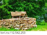 Купить «Traditional sledge», фото № 12542253, снято 19 июля 2019 г. (c) PantherMedia / Фотобанк Лори