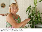 Женщина ухаживает за комнатными цветами. Стоковое фото, фотограф Ирина Новак / Фотобанк Лори