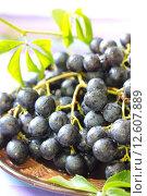 Спелый виноград. Стоковое фото, фотограф Ольга Гамзова / Фотобанк Лори