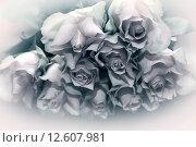 Купить «Букет роз», фото № 12607981, снято 15 апреля 2015 г. (c) Морозова Татьяна / Фотобанк Лори