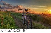 Велосипед на закате (2015 год). Редакционное фото, фотограф Лесных Дмитрий / Фотобанк Лори