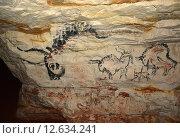 Купить «Наскальная живопись в Саблинской пещере», фото № 12634241, снято 12 декабря 2014 г. (c) Алексей Кокоулин / Фотобанк Лори