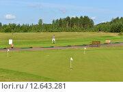 Купить «Зеленые гольф поля с игроком», фото № 12643281, снято 18 июля 2015 г. (c) Валерия Попова / Фотобанк Лори