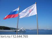 """Купить «Флаги. """"Восточный экономический форум"""". Остров Русский.  Владивосток», эксклюзивное фото № 12644765, снято 5 сентября 2015 г. (c) syngach / Фотобанк Лори"""