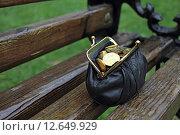 Кожаный кошелек с монетами стоит на скамейке. Стоковое фото, фотограф Galina Barbieri / Фотобанк Лори