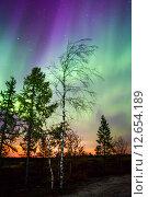 Купить «Northern lights (Aurora Borealis)», фото № 12654189, снято 7 сентября 2015 г. (c) Art Konovalov / Фотобанк Лори