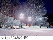 Купить «Зимний вечер в городском парке», фото № 12654401, снято 23 марта 2019 г. (c) Зезелина Марина / Фотобанк Лори