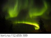 Купить «Northern lights (Aurora Borealis)», фото № 12659189, снято 9 сентября 2015 г. (c) Art Konovalov / Фотобанк Лори