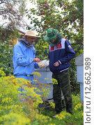 Рассказ о пчелиных сотах (2015 год). Редакционное фото, фотограф Анатолий Матвейчук / Фотобанк Лори
