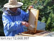 Пчеловод сметает пчел (2015 год). Редакционное фото, фотограф Анатолий Матвейчук / Фотобанк Лори