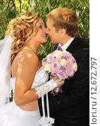 Купить «Поцелуй жениха и невесты», фото № 12672797, снято 26 июля 2014 г. (c) Виктор Топорков / Фотобанк Лори