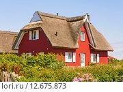 Купить «red thatched-roof vacation house», фото № 12675873, снято 20 января 2020 г. (c) PantherMedia / Фотобанк Лори
