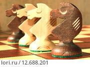 Шахматная фигура - конь. Стоковое фото, фотограф Сергеев Валерий / Фотобанк Лори