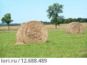 Рулоны сена на зеленом лугу. Стоковое фото, фотограф Ирина Борсученко / Фотобанк Лори
