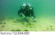 Купить «Подводный поиск с металлодетектором, озеро Байкал», видеоролик № 12694081, снято 4 сентября 2014 г. (c) Некрасов Андрей / Фотобанк Лори