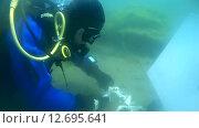 Купить «Подводный художник Юрий Адексеев рисует картину под водой в озере Байкал», видеоролик № 12695641, снято 5 сентября 2014 г. (c) Некрасов Андрей / Фотобанк Лори