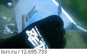 Купить «Подводный художник Юрий Адексеев рисует картину под водой в озере Байкал», видеоролик № 12695733, снято 5 сентября 2014 г. (c) Некрасов Андрей / Фотобанк Лори