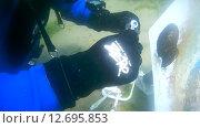 Купить «Подводный художник Юрий Адексеев рисует картину под водой в озере Байкал», видеоролик № 12695853, снято 5 сентября 2014 г. (c) Некрасов Андрей / Фотобанк Лори
