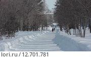 Люди идущие в красивом зимнем парке (2015 год). Редакционное видео, видеограф Алексей Жарков / Фотобанк Лори