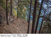Туристы идут по большой Байкальской тропе. Стоковое фото, фотограф Илья Ордовский-Танаевский / Фотобанк Лори