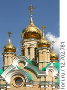 Купить «Город Омск, церковь во имя Св. Иоанна Крестителя, купола», фото № 12702781, снято 8 июня 2013 г. (c) Виктор Топорков / Фотобанк Лори