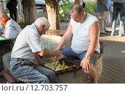 Купить «Дворовая компания, игра в шахматы», фото № 12703757, снято 3 августа 2015 г. (c) Михаил Рыбачек / Фотобанк Лори