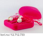 Красивый подарок. Стоковое фото, фотограф Екатерина Ветошкина / Фотобанк Лори