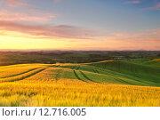Купить «Сельский пейзаж, восход, Тоскана», фото № 12716005, снято 14 мая 2014 г. (c) Наталья Волкова / Фотобанк Лори
