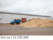 Купить «Сортировка зерна», эксклюзивное фото № 12735985, снято 20 августа 2015 г. (c) Иван Карпов / Фотобанк Лори