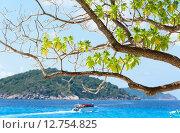 Купить «Beautiful blue sea at Koh Miang in Mu Koh Similan, Thailand», фото № 12754825, снято 27 мая 2019 г. (c) PantherMedia / Фотобанк Лори