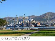 Купить «Порт в Новороссийске», эксклюзивное фото № 12759973, снято 31 августа 2015 г. (c) Наталья Горкина / Фотобанк Лори