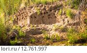 Купить «Ласточкины гнезда в песчаном берегу реки», фото № 12761997, снято 7 июля 2015 г. (c) Сергей Лысенко / Фотобанк Лори