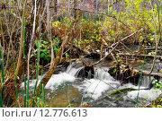 Ручей в осеннем лесу. Стоковое фото, фотограф Светлана Швенк / Фотобанк Лори