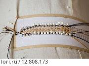 Плетение кружева на коклюшках. Фрагмент. Стоковое фото, фотограф Смирнов Андрей Владимирович / Фотобанк Лори