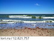 Купить «Балтийский берег и морской прибой», фото № 12821757, снято 20 июля 2013 г. (c) Сергей Трофименко / Фотобанк Лори