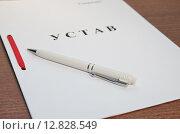 Купить «Регистрация организации. Устав и ручка на столе в офисе», эксклюзивное фото № 12828549, снято 8 октября 2015 г. (c) Илюхина Наталья / Фотобанк Лори