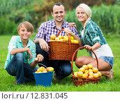 Купить «Happy parents and teenager holding apples», фото № 12831045, снято 19 сентября 2018 г. (c) Яков Филимонов / Фотобанк Лори