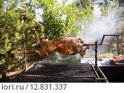 Купить «Туша запекается на углях», эксклюзивное фото № 12831337, снято 26 сентября 2015 г. (c) Михаил Ворожцов / Фотобанк Лори
