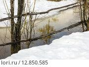 Весна. Стоковое фото, фотограф Королева Юлия / Фотобанк Лори