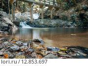 Мост в джунглях. Стоковое фото, фотограф fjodorov vladimir / Фотобанк Лори