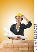 Купить «Businesswoman with drawings near brick wall», фото № 12859765, снято 27 июля 2012 г. (c) Elnur / Фотобанк Лори