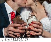 Купить «Голуби в руках жениха и невесты», эксклюзивное фото № 12864177, снято 24 апреля 2015 г. (c) Игорь Низов / Фотобанк Лори