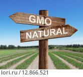 Купить «Дорожный знак с надписями GMO и natural стоит на поле», фото № 12866521, снято 21 июня 2015 г. (c) Андрей Кузьмин / Фотобанк Лори