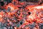 Красивый костёр с яркими раскалёнными углями, фото № 12869409, снято 3 октября 2015 г. (c) Алексей Маринченко / Фотобанк Лори