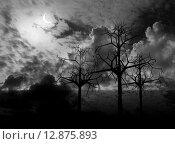 Купить «Ночь, луна. 3d графика», фото № 12875893, снято 18 февраля 2018 г. (c) ElenArt / Фотобанк Лори