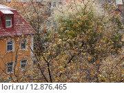 Купить «Первый снег в городе на фоне осенних деревьев и домов», фото № 12876465, снято 9 октября 2015 г. (c) Горшков Игорь / Фотобанк Лори