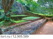 Купить «Лестница в замке Льва. Сигирия. Шри-Ланка», фото № 12905589, снято 20 марта 2015 г. (c) Михаил Коханчиков / Фотобанк Лори