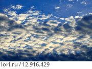 Купить «Небесный пейзаж с кучевыми облаками», фото № 12916429, снято 13 августа 2015 г. (c) Сергей Трофименко / Фотобанк Лори